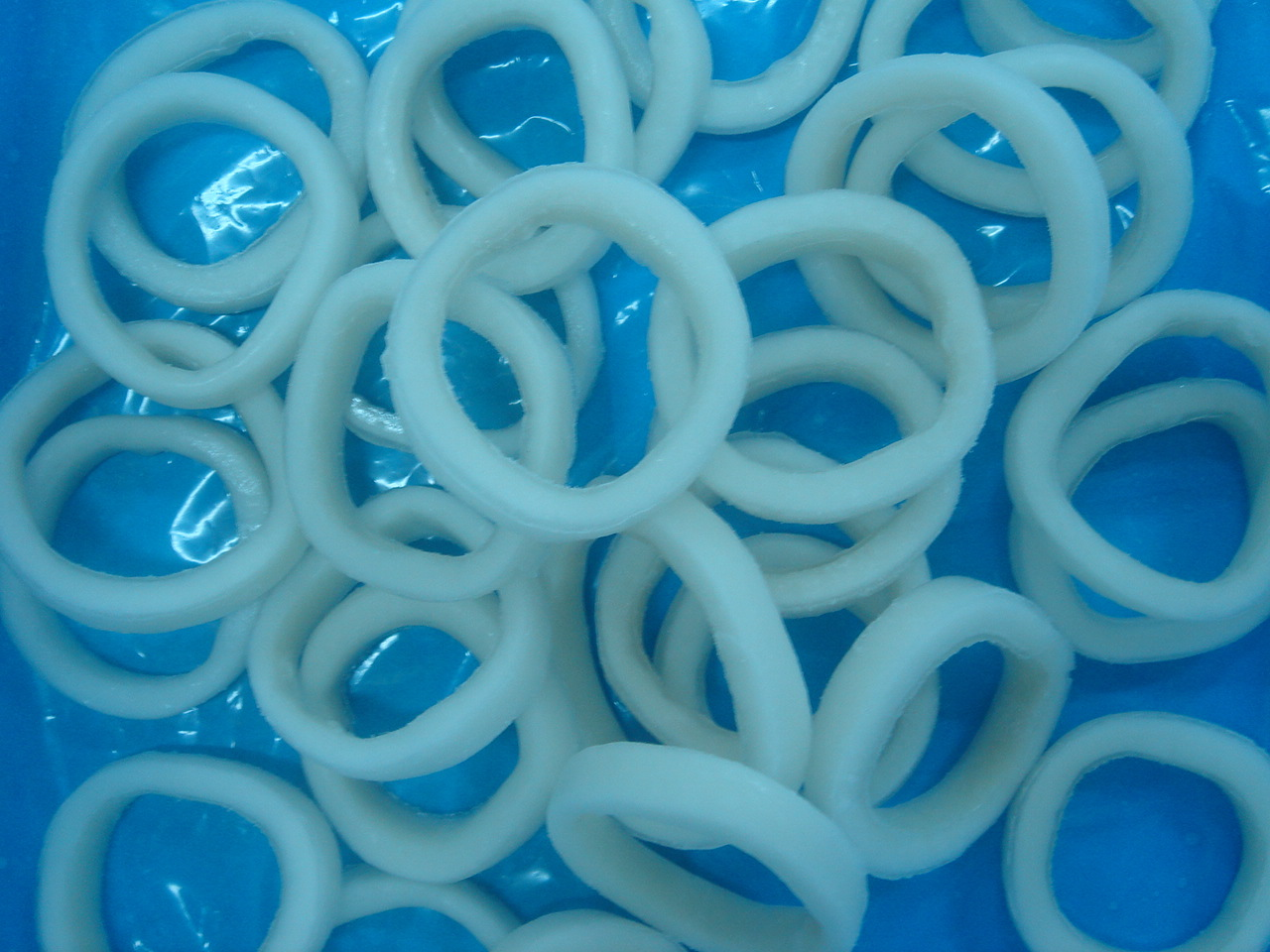 Squid_ring
