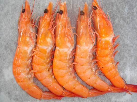sell_shrimp